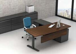 Stand Up Adjustable Executive