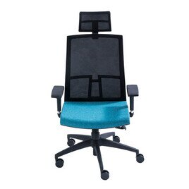 TS Chair High Back